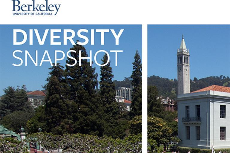 Diversity Snapshot Thumbnail