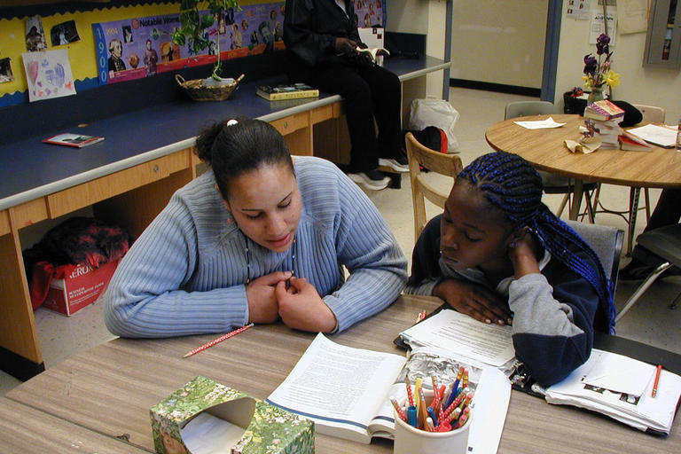 Working with K-12 School and Community Colleges