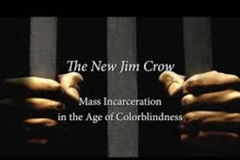 The New Jim Crow:  Mass Incarceration in the Time of Colorblindness by Michelle Alexander
