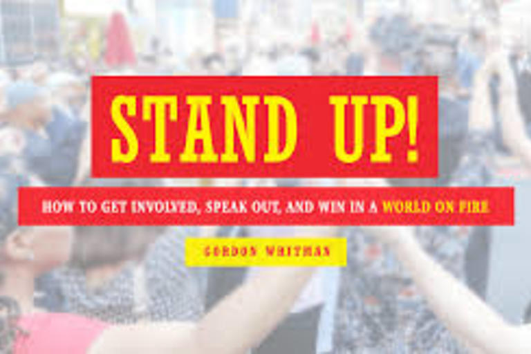 Stand Up!: How to Get Involved, Speak Out, and Win in a World on Fire by Gordon Whitman