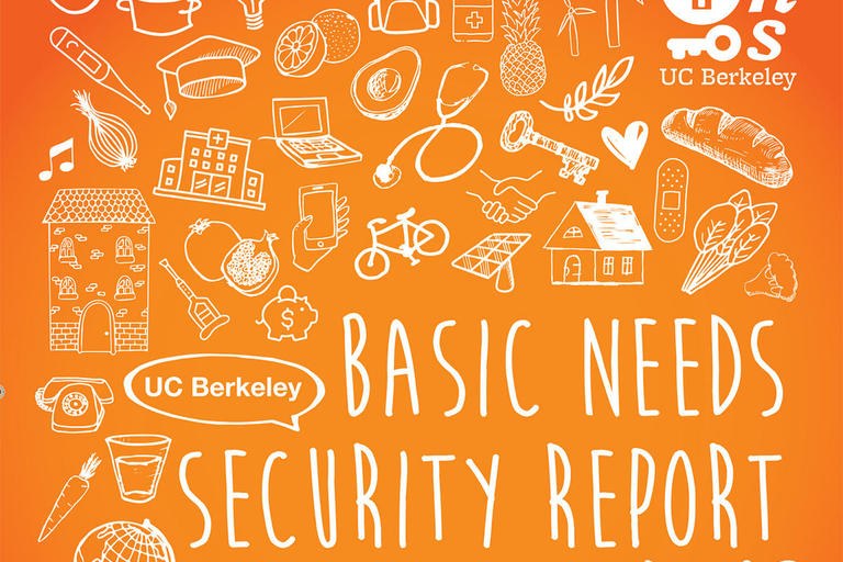 UC Berkeley Basic Needs Report 2016-17