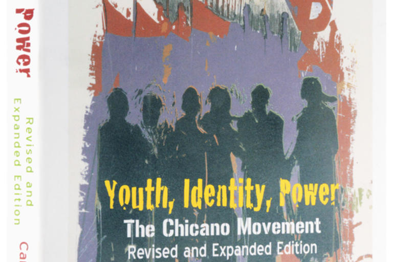 Youth, Identity, Power:  The Chicano Movement  by Carlos Muñoz, Jr.